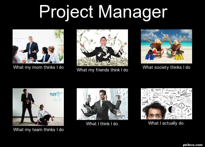 Project manager what my m perception vs fact picloco for Do my project